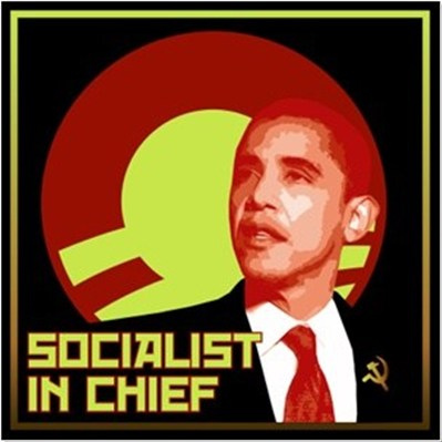 Obama Socialist in Chief