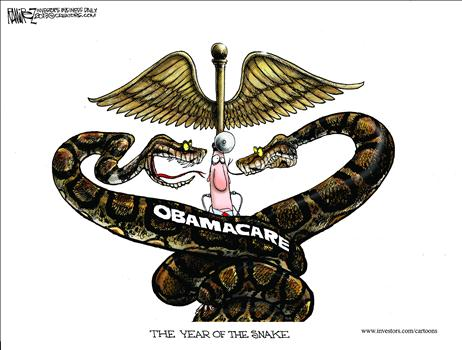 Year of the Snake ObamaCare