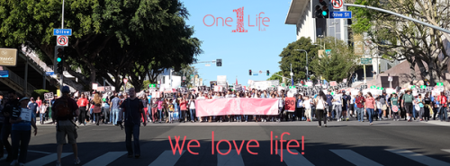 One Life Los Angeles...
